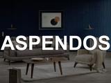 ASPENDOS SALON TAKIMI